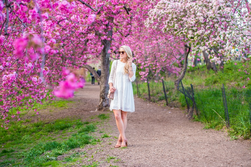 french connection dress, spring in central park