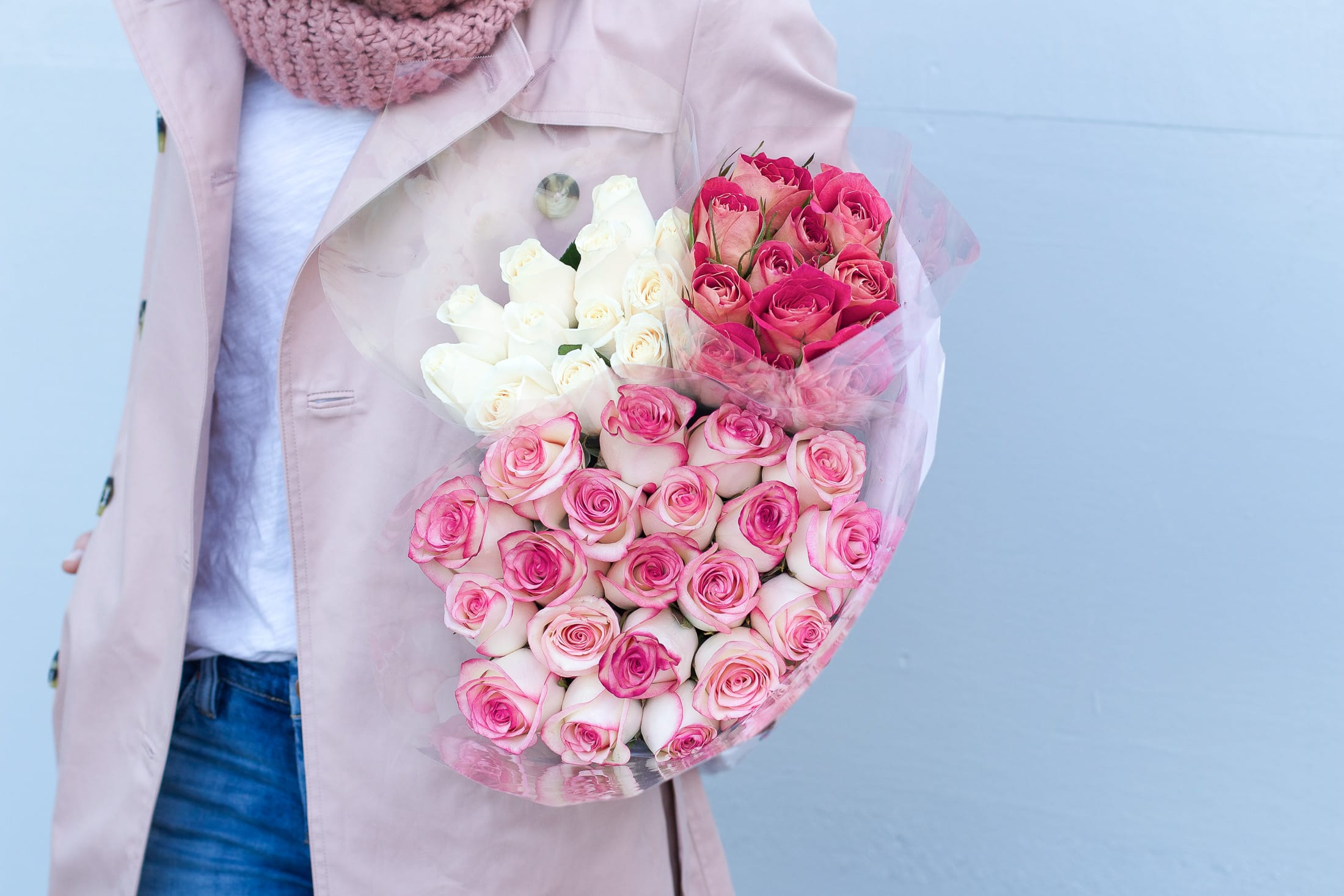 valentines day roses, pink roses