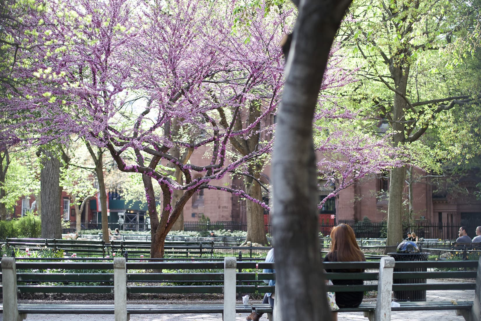 parks in new york city