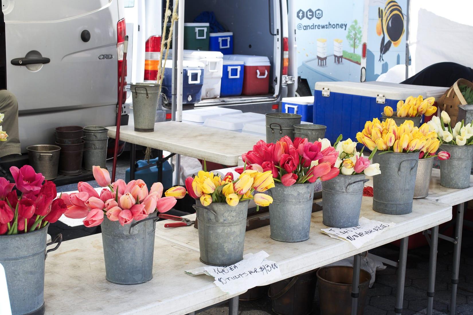 tulips farmers market