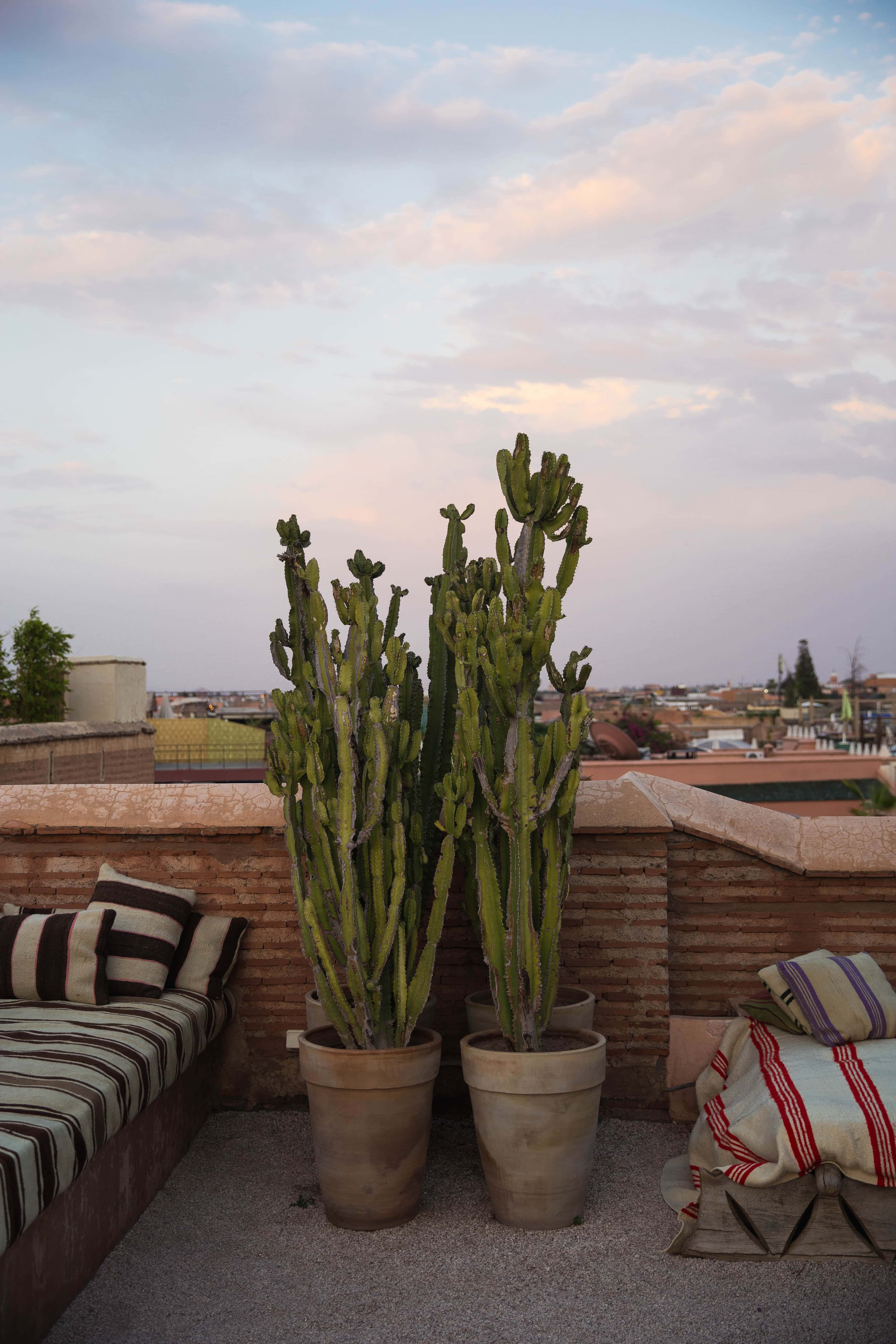 Best places to go in Marrakech