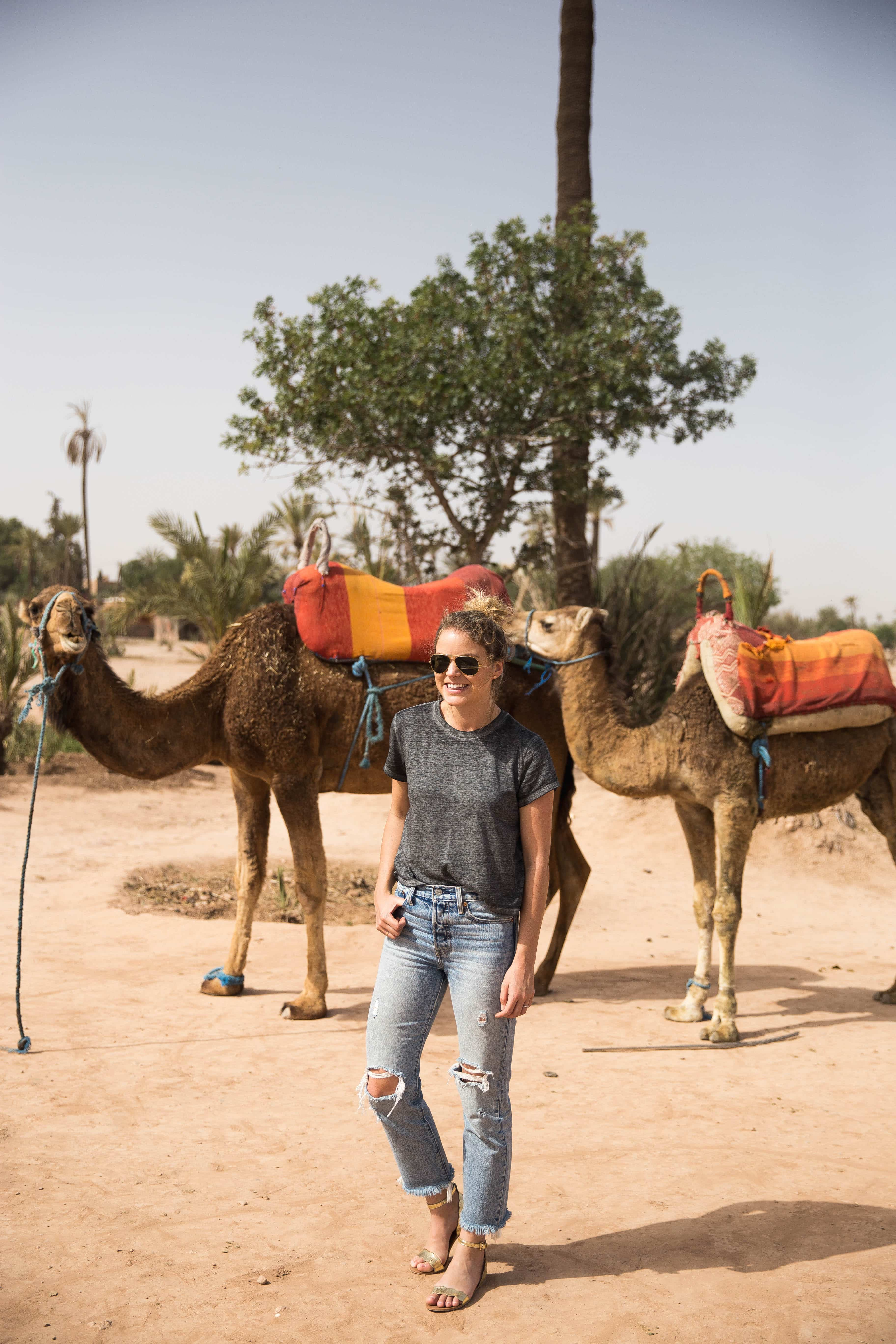 Authentic Camel RIdes Africe