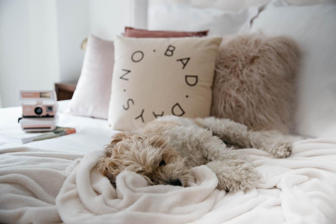 No Bad Days Pillow