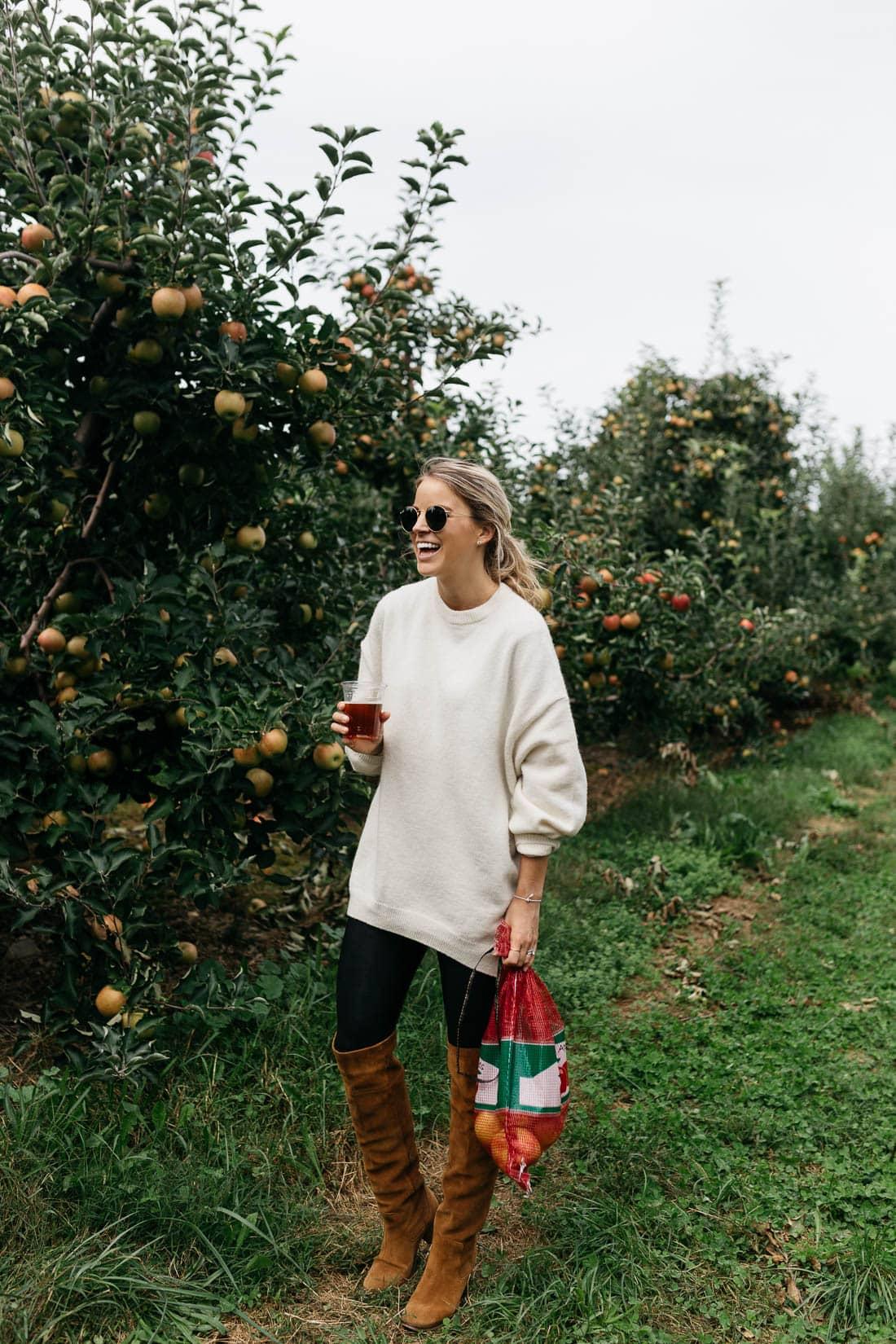 apple picking upstate