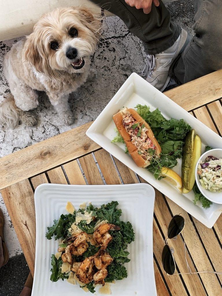 best seafood in newport rhode island